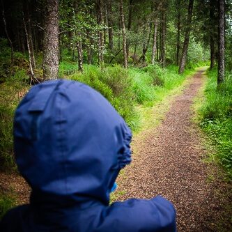 Child enjoying a bespoke walk in ancient woodland